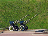 Two cannons — Stock Photo