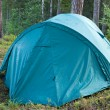 Tent in a forest — Foto Stock