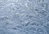 Frozen window — Stock Photo