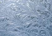 Frozen window — Stock Photo