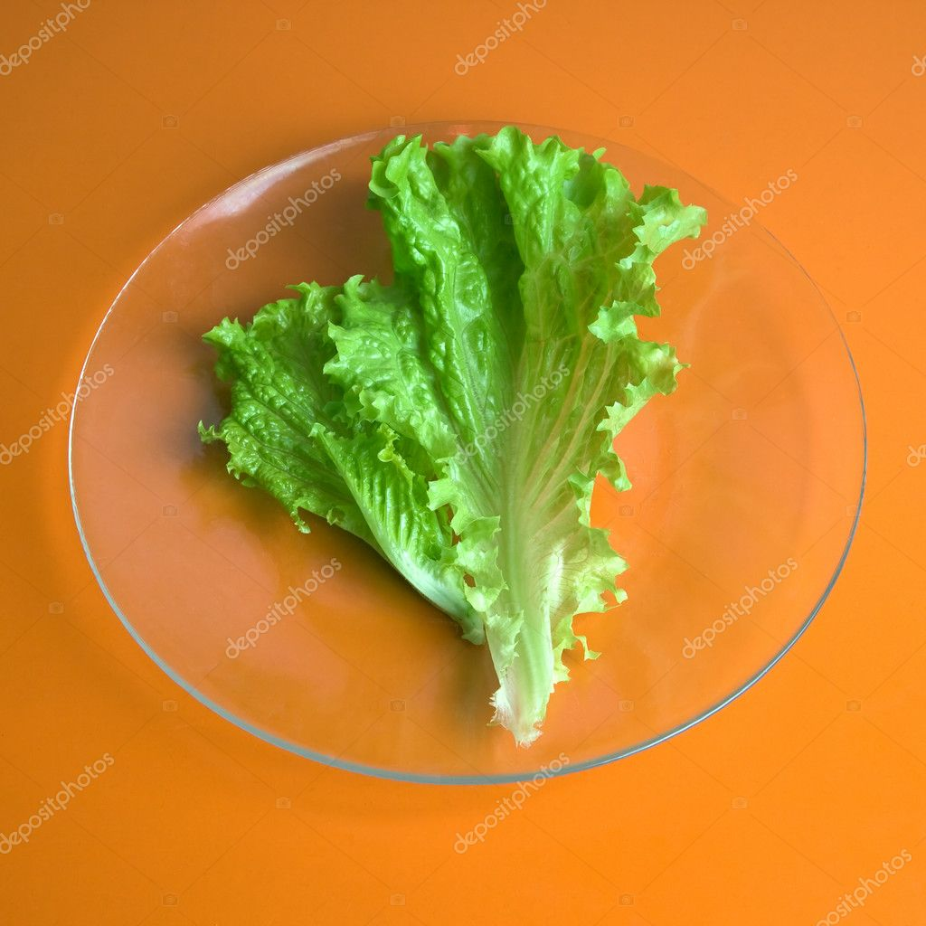 A lettuce leaf on a glass plate, fork and knife — Stock Photo #1041265
