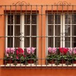 Royalty-Free Stock Photo: Two windows