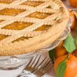 Tart with mandarins — Stock Photo