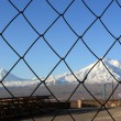 Foto Stock: Ararat behind grating