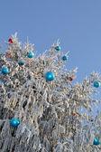 The Christmas tree — Stock Photo
