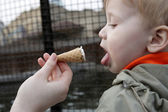 Child and ice cream — Stock Photo