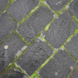 Cobbles — Stock Photo #1086797