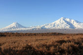 Ararat in the morning — Stock Photo