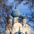 The Nativity cathedral - Foto Stock