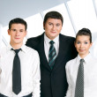 Business team — Stock Photo #1087140