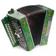 Foto Stock: Green Accordion, isolated on white backg