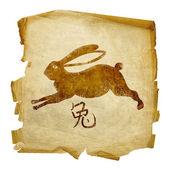 Królik zodiaku ikona, na białym tle na b biały — Zdjęcie stockowe
