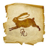 Rabbit Zodiac icon, isolated on white b — Photo