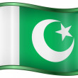 Pakistan Flag Icon — Stock Vector