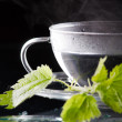 Royalty-Free Stock Photo: Tea nettle