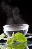 イラクサ茶 — ストック写真