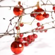 Winter berries - Stock Photo