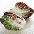 A head of radicchio — Stock Photo