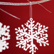 Beautiful snowflakes — Stock Photo #1098838