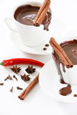 Hot chocolate with spice — Stock Photo
