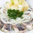 Stock Photo: Marinated herring fillets