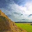 Royalty-Free Stock Photo: Farmland