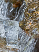 The glass filled in a creek — Stock Photo