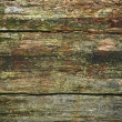 Weathered wood — Stock Photo