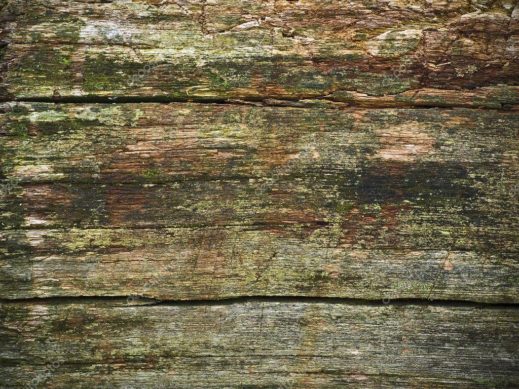 Weathered Wood Stock Photo 169 S E 2160906