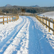 Snow Road — Stock Photo