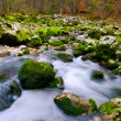 Flowing Water - Stock fotografie