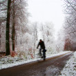 Stock Photo: Cycling in forest after night snowfall