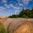 Bales of hay and windmill - Stock Photo