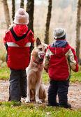 Dog and children — Stock Photo