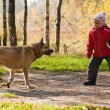 Little girl playing with her dog — Stock Photo #1447597