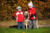 Children playing with dog — Stock Photo