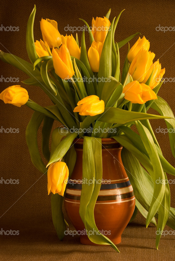 Yellow tulips in clay pot  Stock Photo #1901184