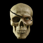 One eyed skull — Stock Photo
