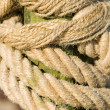 Rope knot — Stock Photo #1087698