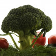 Stock Photo: Broccoli with dill and tomato