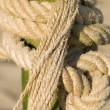 Stock Photo: Rope knot