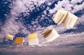 Flock of books flying on blue sky — Stock Photo