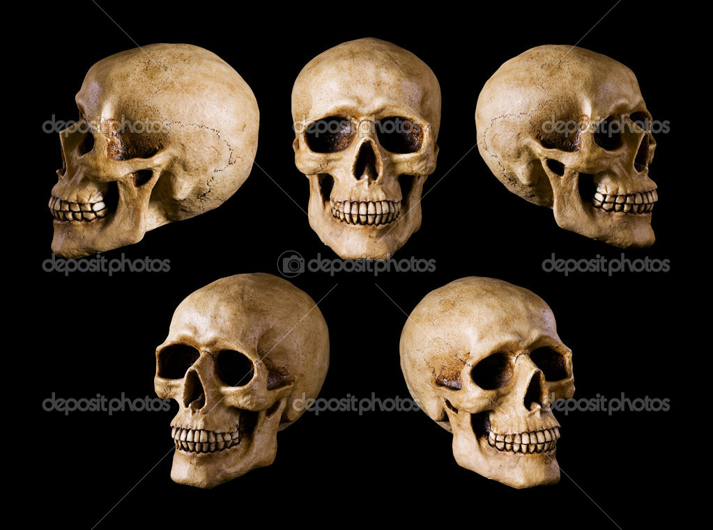 Synthetical skull many angle view on black with clipping path — Stock Photo #1165777
