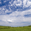 Stock Photo: Wide angle blue sky