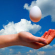 Stock Photo: Hands with egg on sky