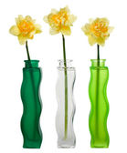 Three narcissuses in vases — Stock Photo