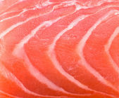 Salmon fish texture background — Stock Photo