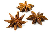 Star anise on a white background — Stock Photo