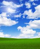 Landscape grass sky — Stock Photo