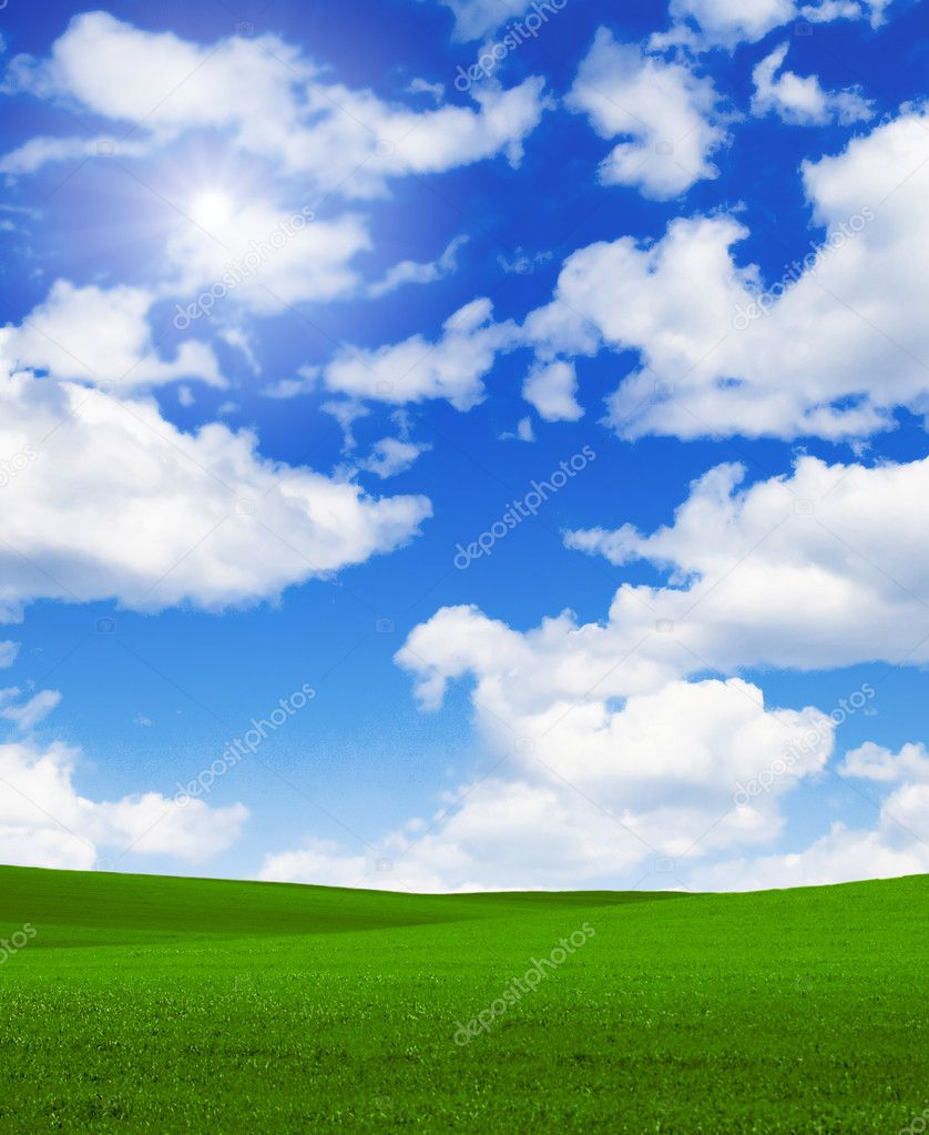Landscape grass sky — Stock Photo #2387278